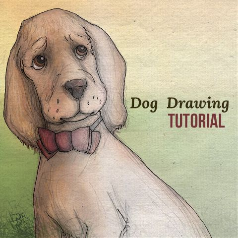 How to Draw a Dog with PicsArt