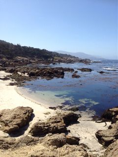 17 mile drive rocky california