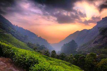 photography nature kerala