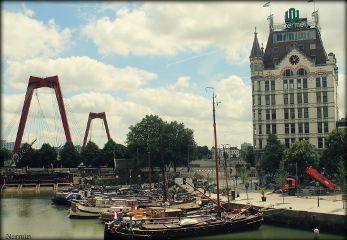 wapbridge rotterdam photography travel holland