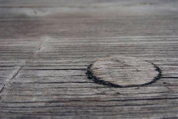 emotions freetoedit photography nature wood