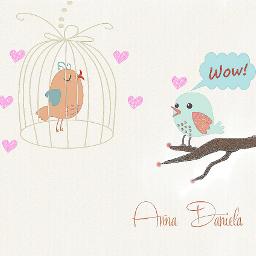 bird cute pencil art love drawing