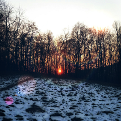waplensflare photography snow